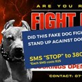 The NSPCA's official response...
