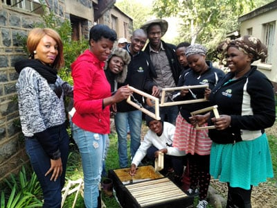 A group of young Abashintshi work on preparing a hive to capture a wild swarm in order to harvest honey.