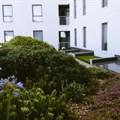 - Roof Garden