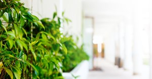 How 'greening' your hotel can benefit your bottom line
