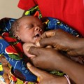 Thesis sharpens focus on a neonatal HIV vaccine