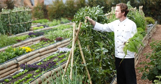 Marketing SA food and wine tourism to international travellers