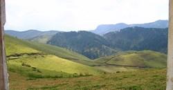 Antoinetorrens via  - Gishwati hills, Rwanda