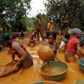 - Prospectors pan for gold at a gold mine on a cocoa farm near Bouafle, Ivory Coast in March. A gold rush in the Ivory Coast and Ghana threatens cocoa production in the two nations, which account for 60 percent of the world's supply of cocoa. Luc Gnago / Reuters