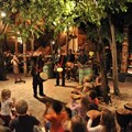 Visit The Boma for an ultra-sensory dinner and show