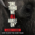 Politicians must heed overwhelming public demand to close all domestic and international ivory markets