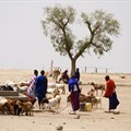 Conservation decisions must protect the livelihoods of people living in Africa