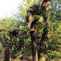 Tough times for SA's all-female anti-poaching unit