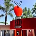 Red Cherry #hitsrefresh