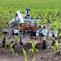 Ag innovation is alive and kicking