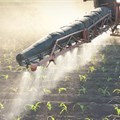 Fertilisers can help African farmers battle climate change