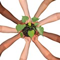 Six things that successful crowdfunding projects have in common