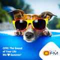 OFM turning up the volume this summer