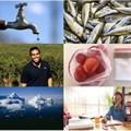 #BestofBiz 2016: CSI & Sustainability