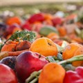 Reducing food waste helps, but it's going to take systemic action to tackle climate change