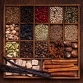 Deli Spices gets international expertise through French partnership