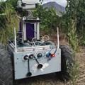 Vineyard robot prototype