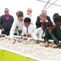 New aquaponics facilities to feed primary schools
