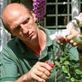 Flex your green fingers at the Rand Show 2017