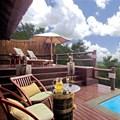 Top three private safari destinations in South Africa