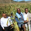 From left to right: ECDC Imvaba Co-operative Fund manager Simphiwe Ntshweni; Matyeni Agricultural Co-operative deputy chairperson Langa Zophondle; and Eastern Cape MEC for Economic Development, Environmental Affairs and Tourism, Sakhumzi Somyo at the launch of the Matyeni Agricultural Co-operative processing plant