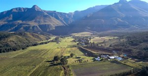 Image Supplied: 30ha farm located in the fertile Hermitage Valley near Swellendam