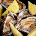 Four reasons to experience the Pick n Pay Knysna Oyster Festival