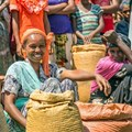 Harnessing informal trade can boost African livelihoods