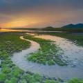 SA, Rwanda to enhance environmental protection