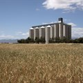 Silos ready for record maize harvest
