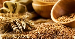 Food commodity prices to remain low over next decade - OECD, FAO