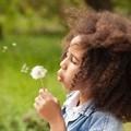 The link between gut bacteria and children developing allergies
