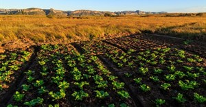 New approaches and sustainable partnerships will enhance food security in Africa