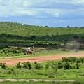 Ulf Rydin via  - Msembe airstrip in Ruaha National Park, Tanzania