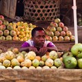 The global food system still benefits the rich at the expense of the poor