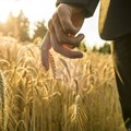 Agri finance in a time of uncertainty and risk
