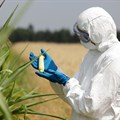 Long-overdue GMO testing laboratory to be established