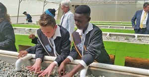 Students plant seedlings in their new aquaponics garden at Laerskool Kempton Park, which was installed by INMED South Africa and Air Products South Africa in Johannesburg.