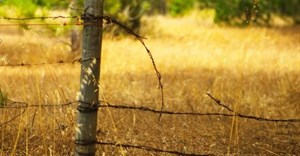 A perspective on rural crime