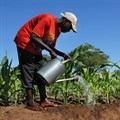 Role of secure tenure rights in eradicating hunger, poverty