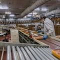 Avian flu may spread via aerosol and droplets