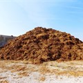 Polluted chicken muck piling up in The Netherlands