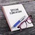 Over 100 special needs schools in Gauteng
