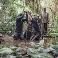 Could the peatlands of Congo be a carbon bomb?