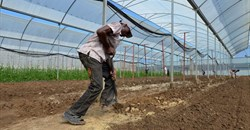 #AgriIndaba: Meeting the challenges of investing in sub-Saharan agriculture