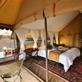 Hayward's Grand Safari Company awarded best mobile safari in Africa