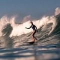 Wavescape unveils female-centric line-up