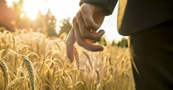 #AgriIndaba: A gateway to investment opportunities in African agriculture