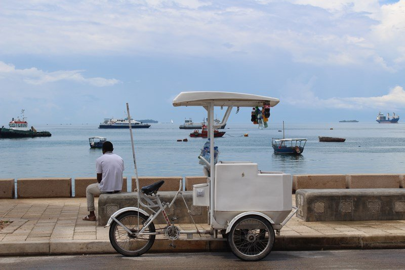 What to do and where to stay in Zanzibar