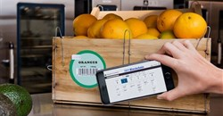 Blockchain Food Safety Alliance formed to enhance supply chain transparency